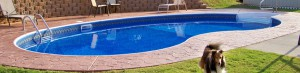 In-Ground Swimming Pools, Greenville, SC